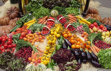 choose raw food diet