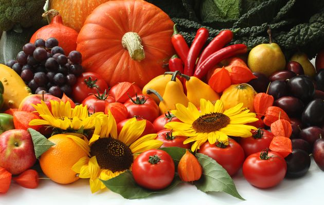 Choosing and combining living food products